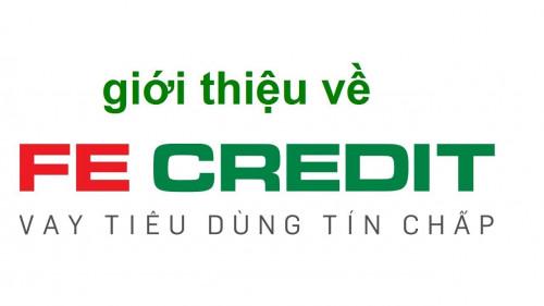 Hướng dẫn vay tiêu dùng tín chấp tại Fe Credit nhanh nhất 2021